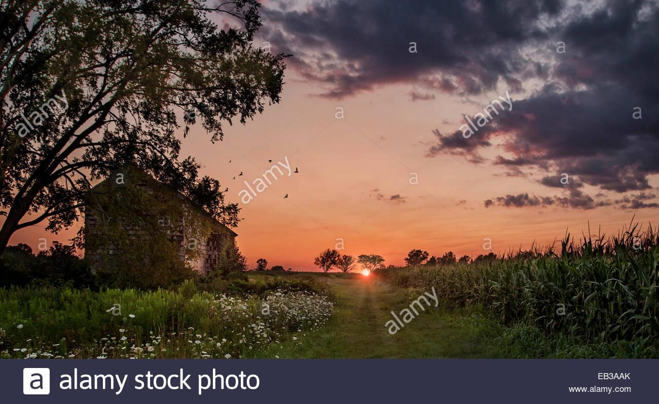 Sonnenuntergang über verlassenen Bauernhaus im Feld, Monmouth, New Jersey, Amerika, USA Stockbild