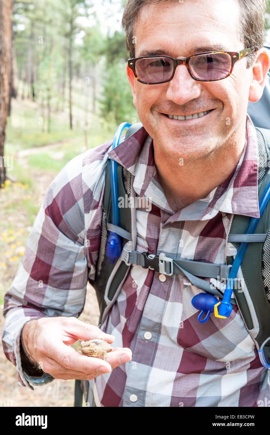 Mann hält Krötenechsen (Phrynosoma), Arizona, America, USA Stockbild