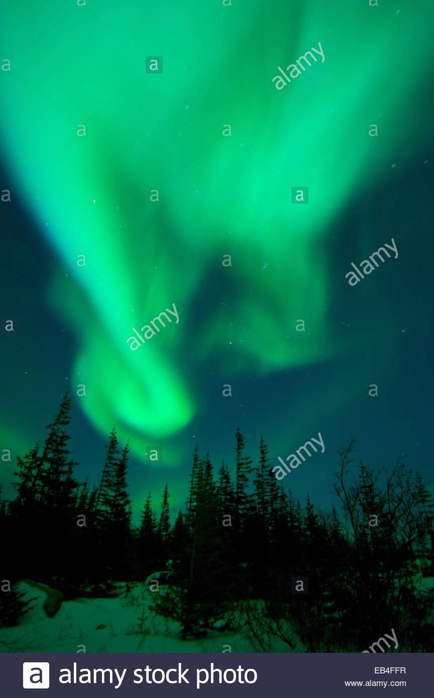 Der Schnee wird durch das Nordlicht am Himmel tanzen beleuchtet. Stockbild