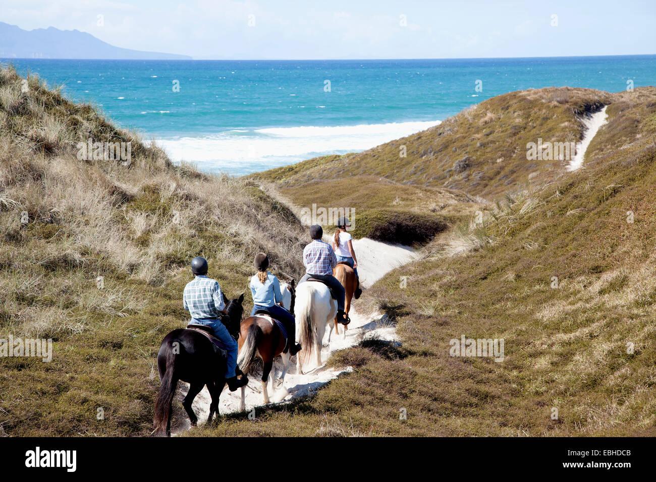 Reiter in Richtung Pakiri Strand, Auckland, Neuseeland Stockbild