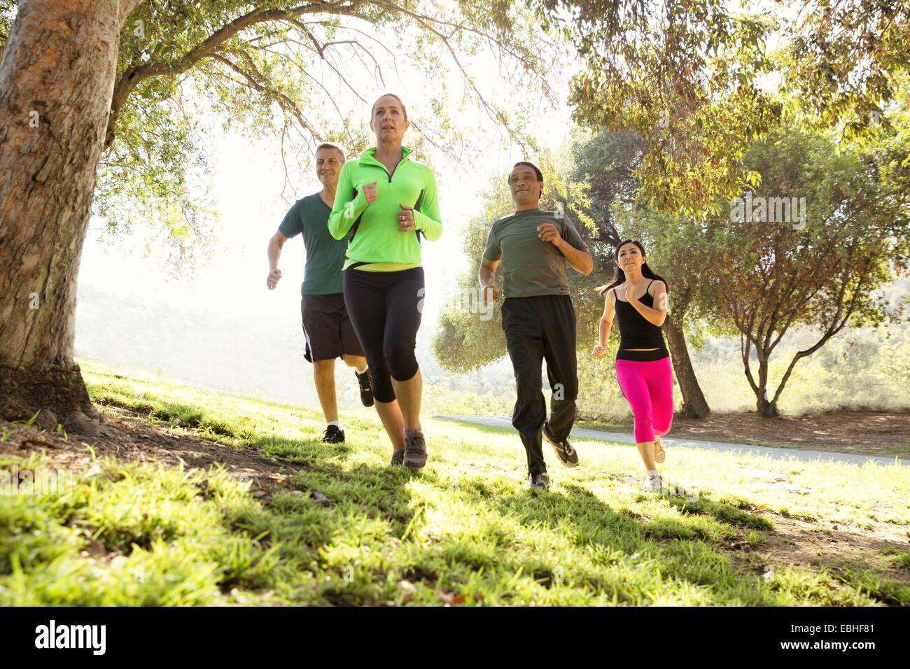 Vier reife Männer und Frauen laufen im park Stockbild