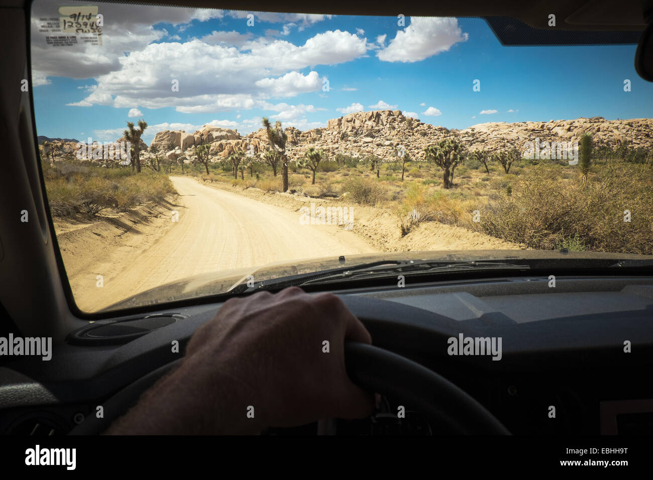 Des Fahrers Hand am Rad des Autos, Joshua Tree Nationalpark, Kalifornien, USA Stockbild