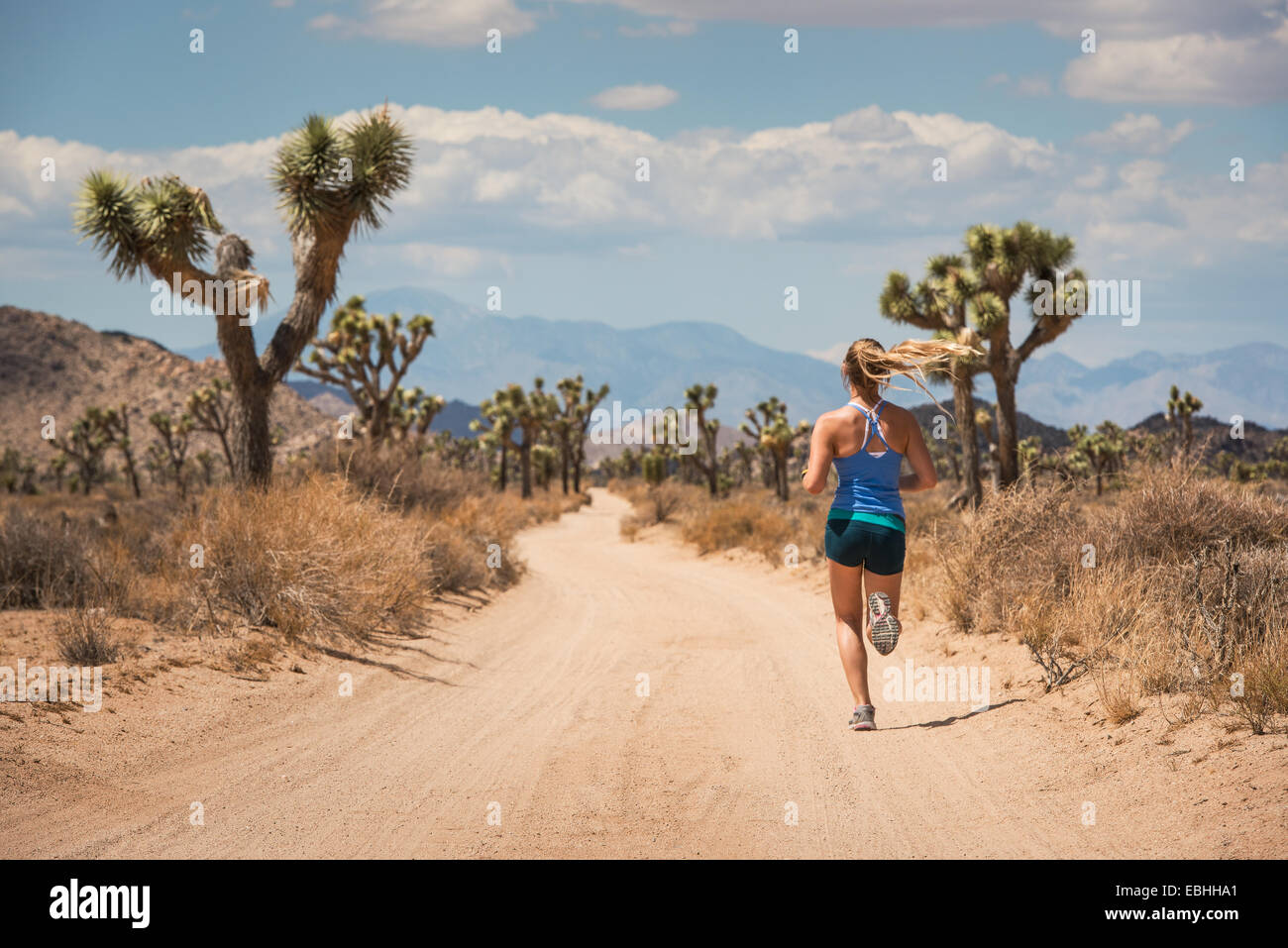 Frau rennt, Joshua Tree Nationalpark, Kalifornien, USA Stockbild