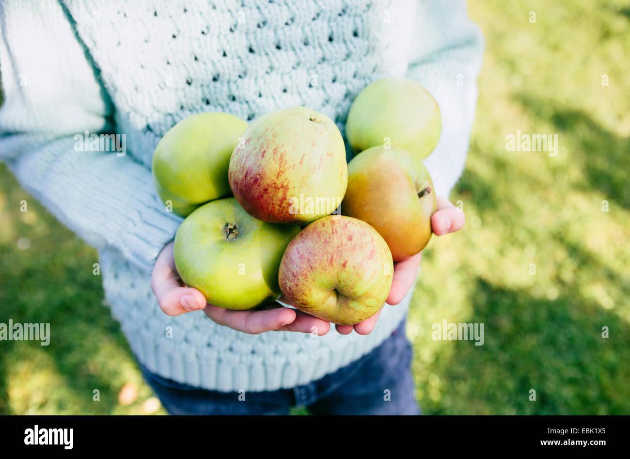 Mädchen in Händen hält, einheimische Äpfel Stockbild