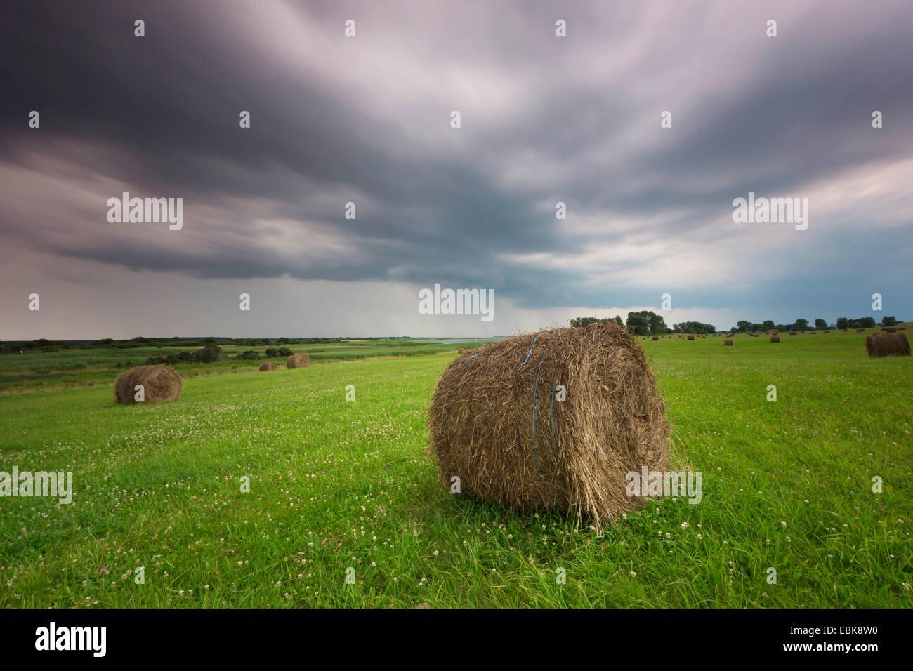 hayballs auf einer wiese am n hert sich gewitter deutschland mecklenburg vorpommern hiddensee. Black Bedroom Furniture Sets. Home Design Ideas
