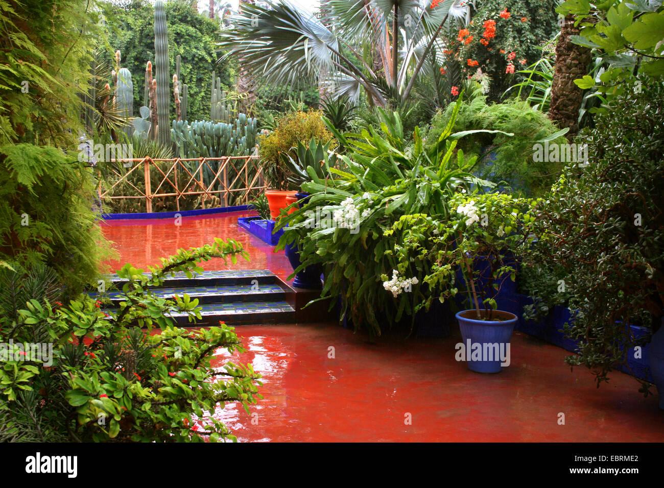 Jardin Majorelle Botanischer Garten Von Yves Saint