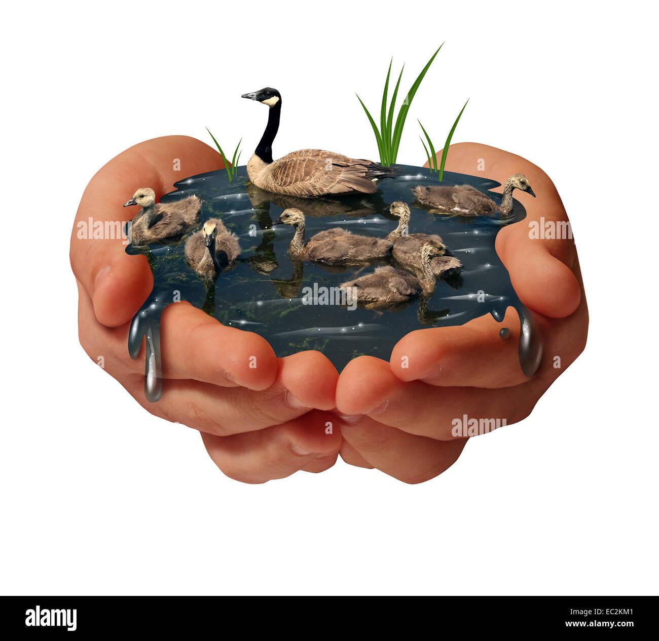 Schutz der Umwelt und Schonung der Umwelt-Konzept als ein paar menschliche Hände halten eine Familie der Gänse Stockbild