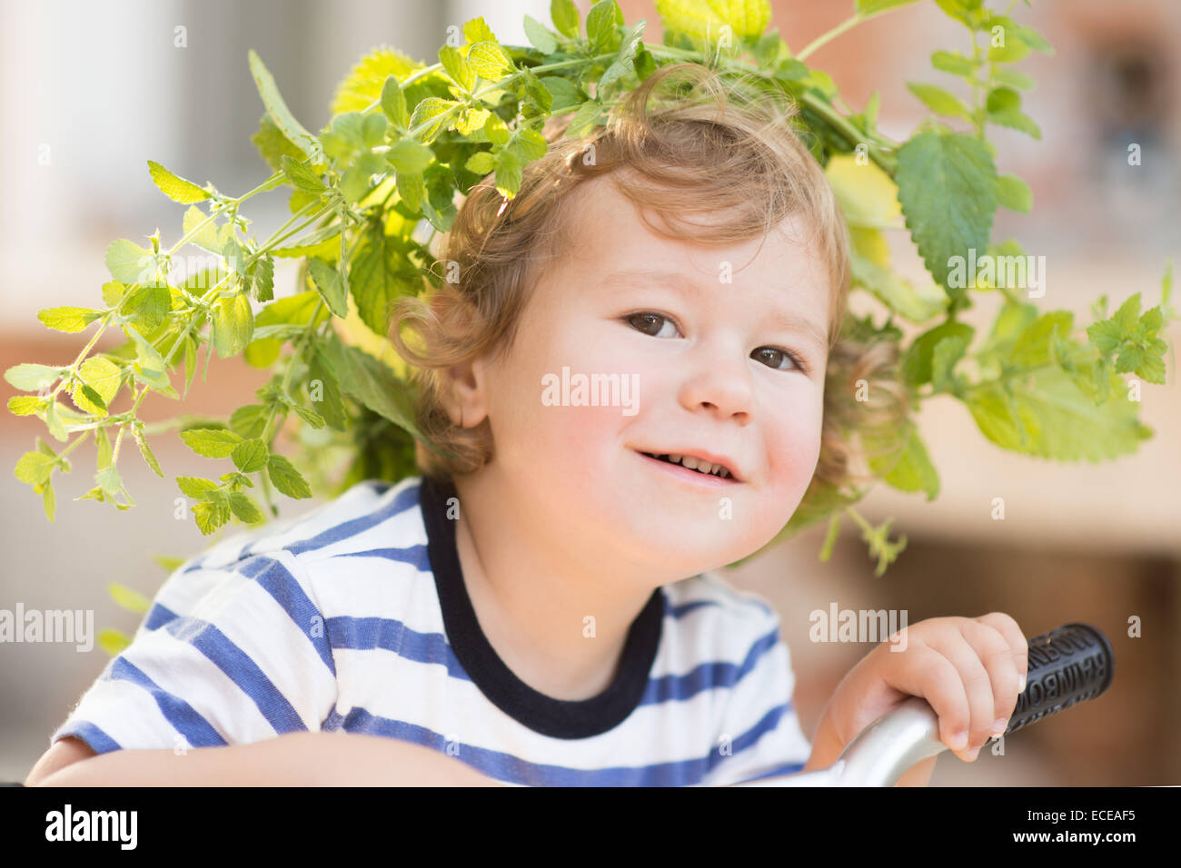 USA, South Carolina, Greenville County, Greenville, Porträt des jungen (2-3) tragen Kranz Stockbild