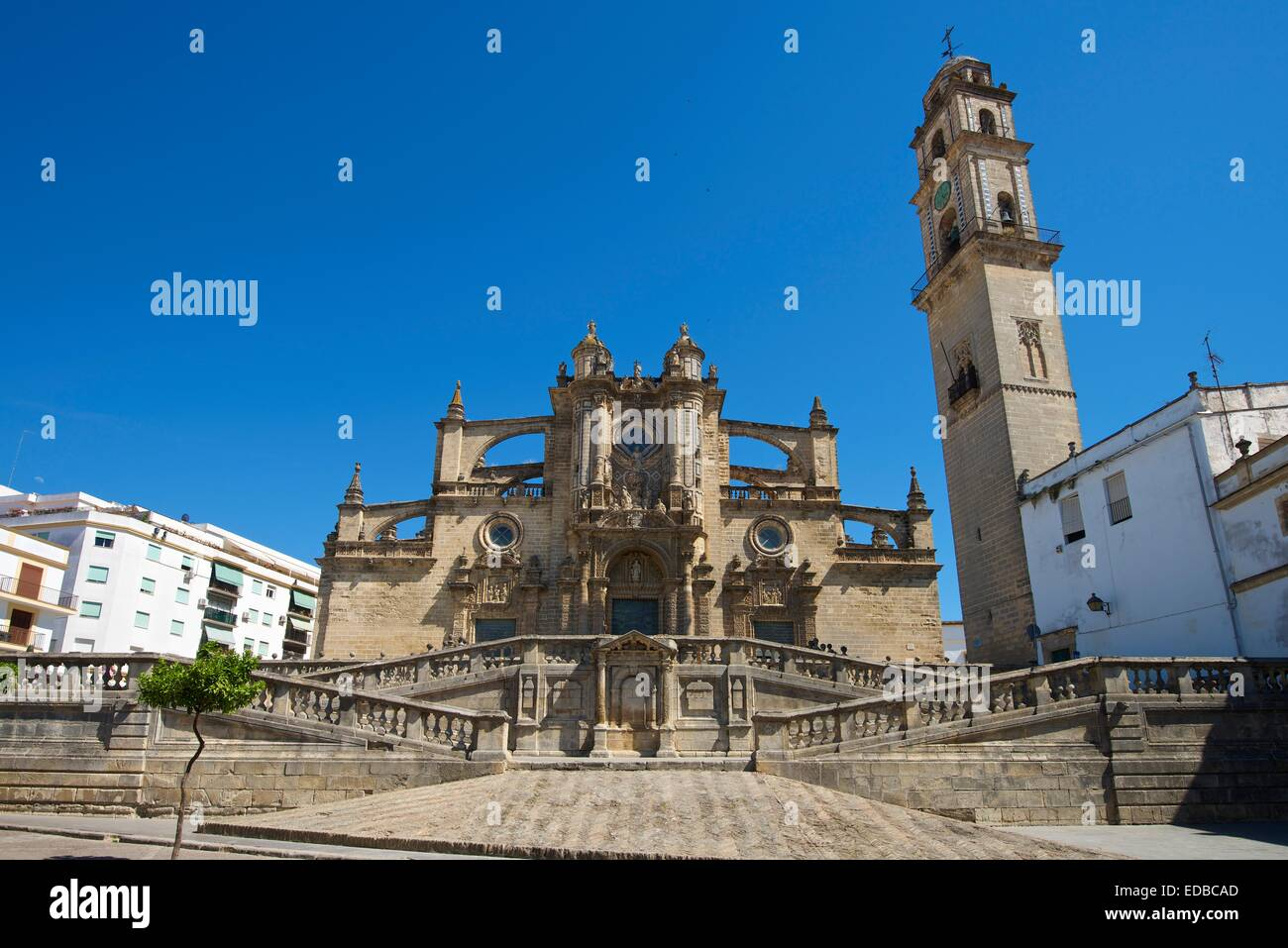 Kathedrale La Colegiata del Salvador, Jerez De La Frontera, Andalusien, Spanien Stockbild