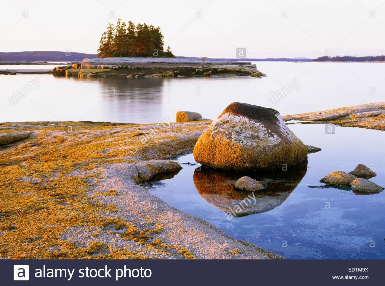 Sonnenuntergang auf den Simsen [Teufel Island] [Jericho Bay] [Hancock County] Maine Stockbild