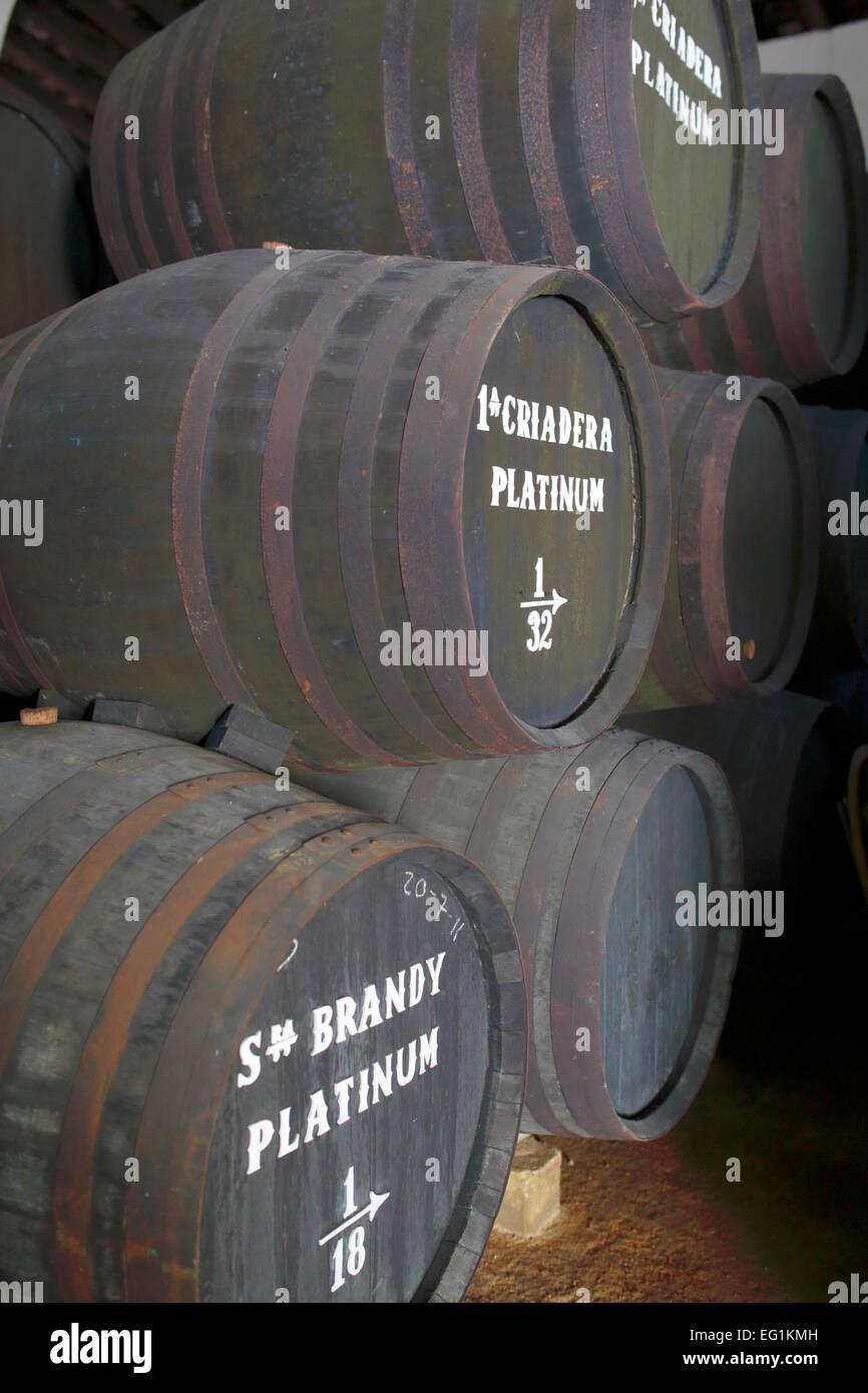 Fässer mit Sherry bei Bodega, Jerez De La Frontera, Andalusien, Spanien Stockbild
