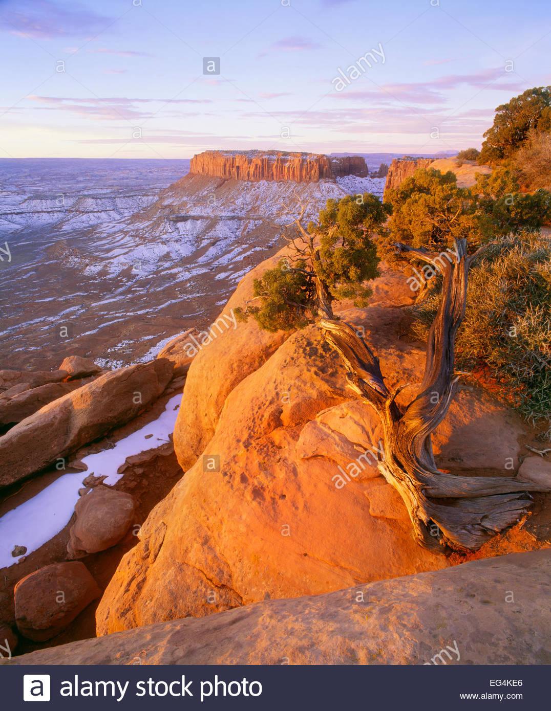 Winter-Sonnenaufgang am Grandview Point.  Island In The Sky.  Canyonlands National Park, Utah. Stockbild