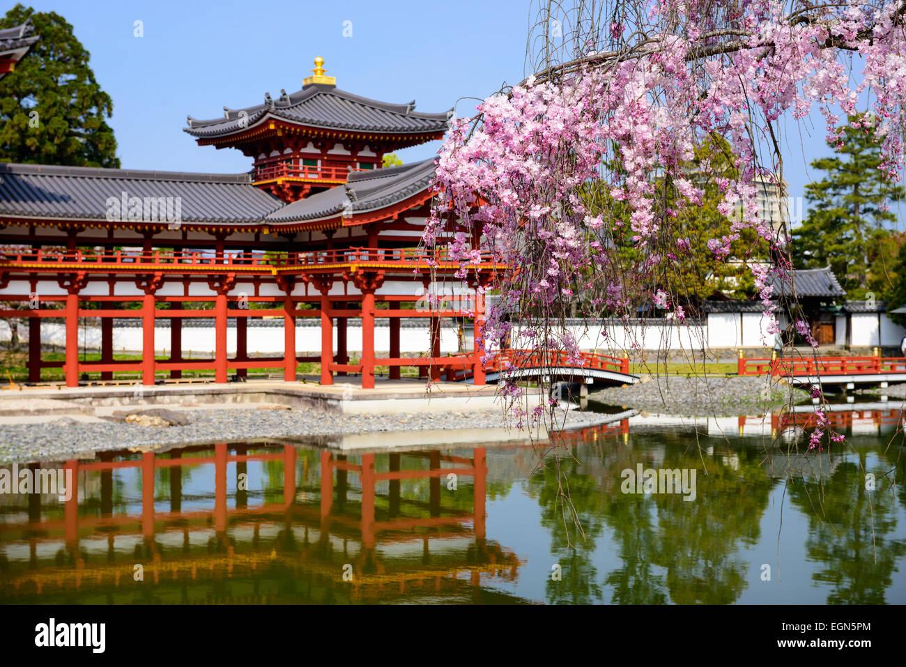 Kyoto, Japan bei Byodo-in Tempel. Stockbild