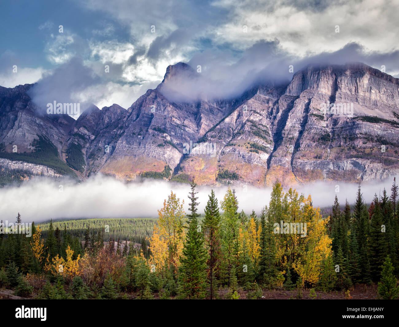 Nebel und niedrige Wolken mit Herbstfarben. Banff Nationalpark. Alberta, Kanada Stockbild