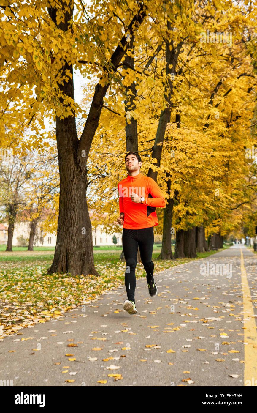 Männliche Läufer Joggen im park Stockbild