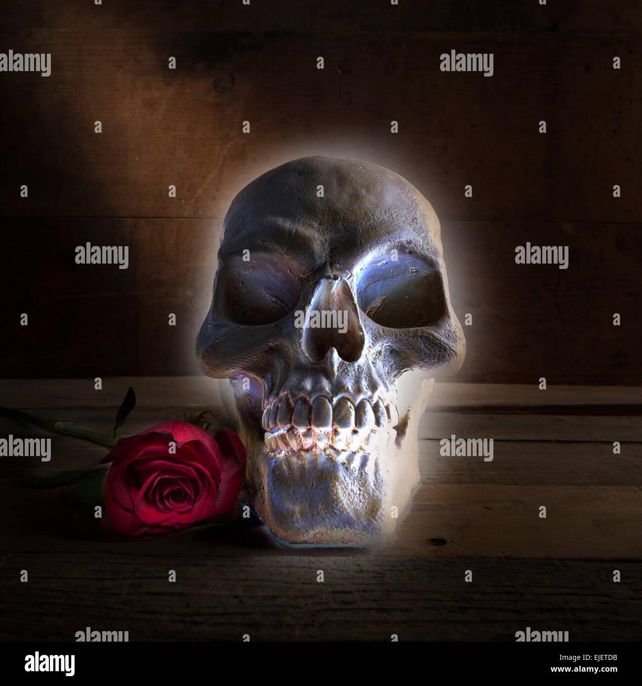 Halloween leuchtenden Totenkopf mit Rose Stockbild