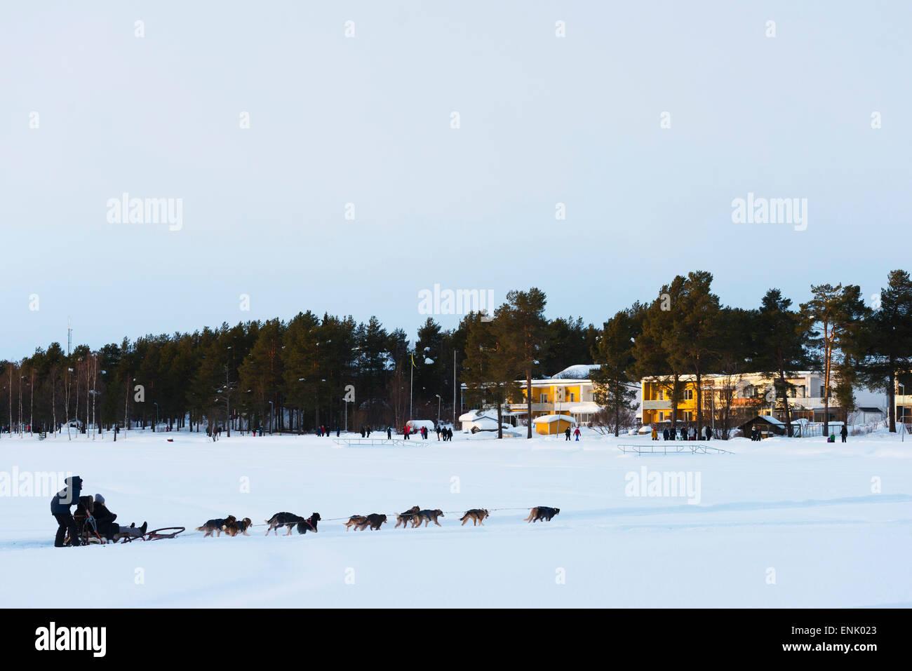 Hundeschlitten, Jokkmokk, Lappland, Arctic Circle, Schweden, Skandinavien, Europa Stockbild