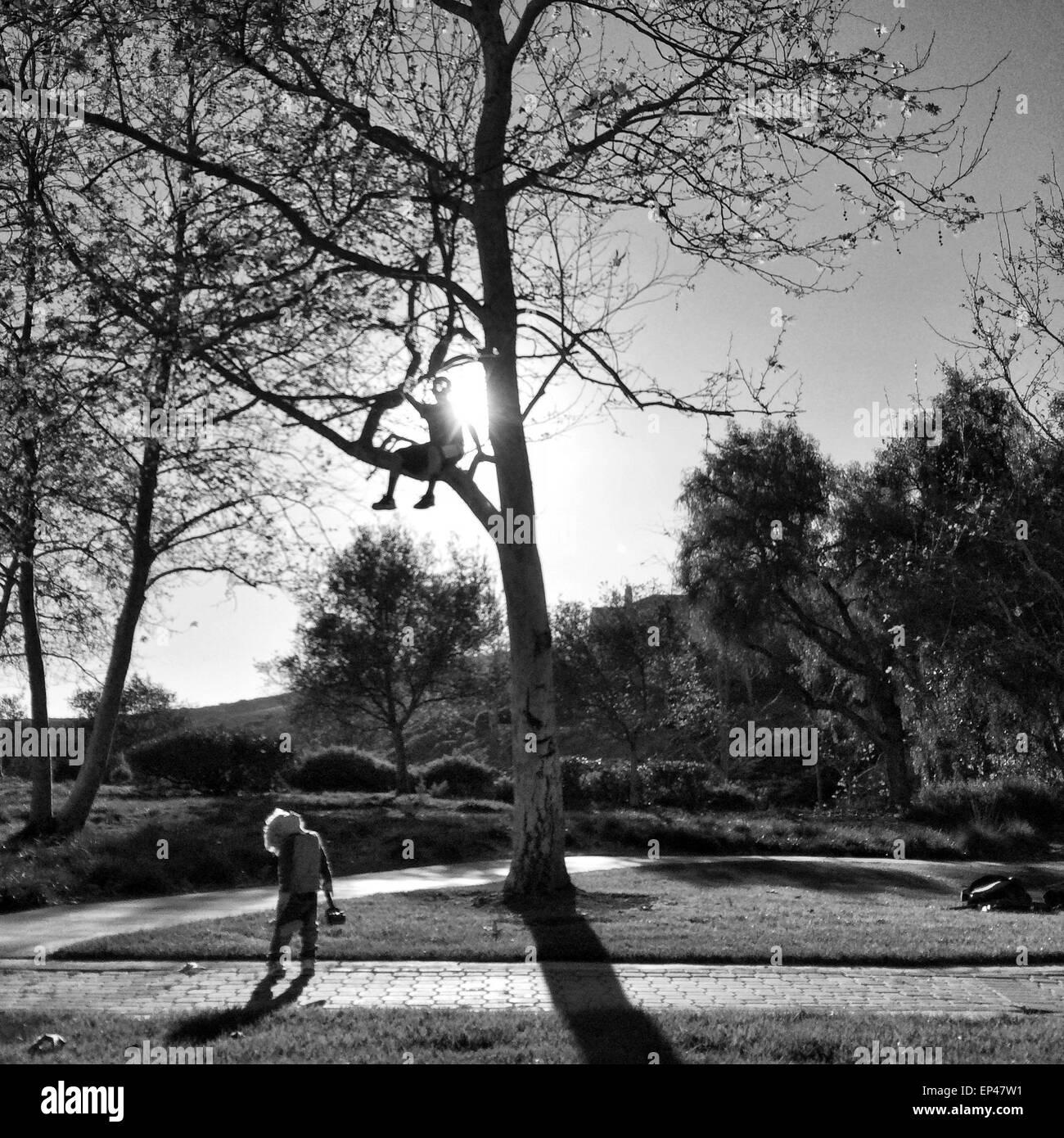 Junge sitzt in einem Baum blickte auf seinen Freund Stockbild