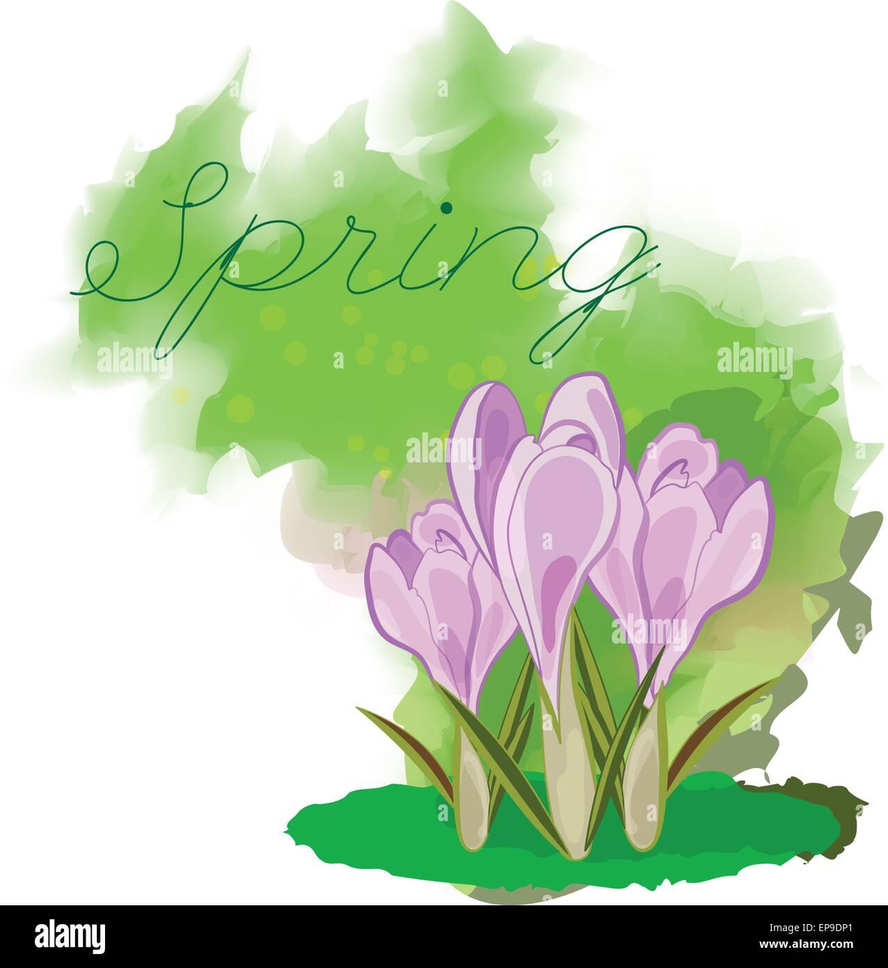 Innenarchitektur Welche Blumen Blühen Im März Sammlung Von Frühling Blumen. . Grußkarte Für März 8.