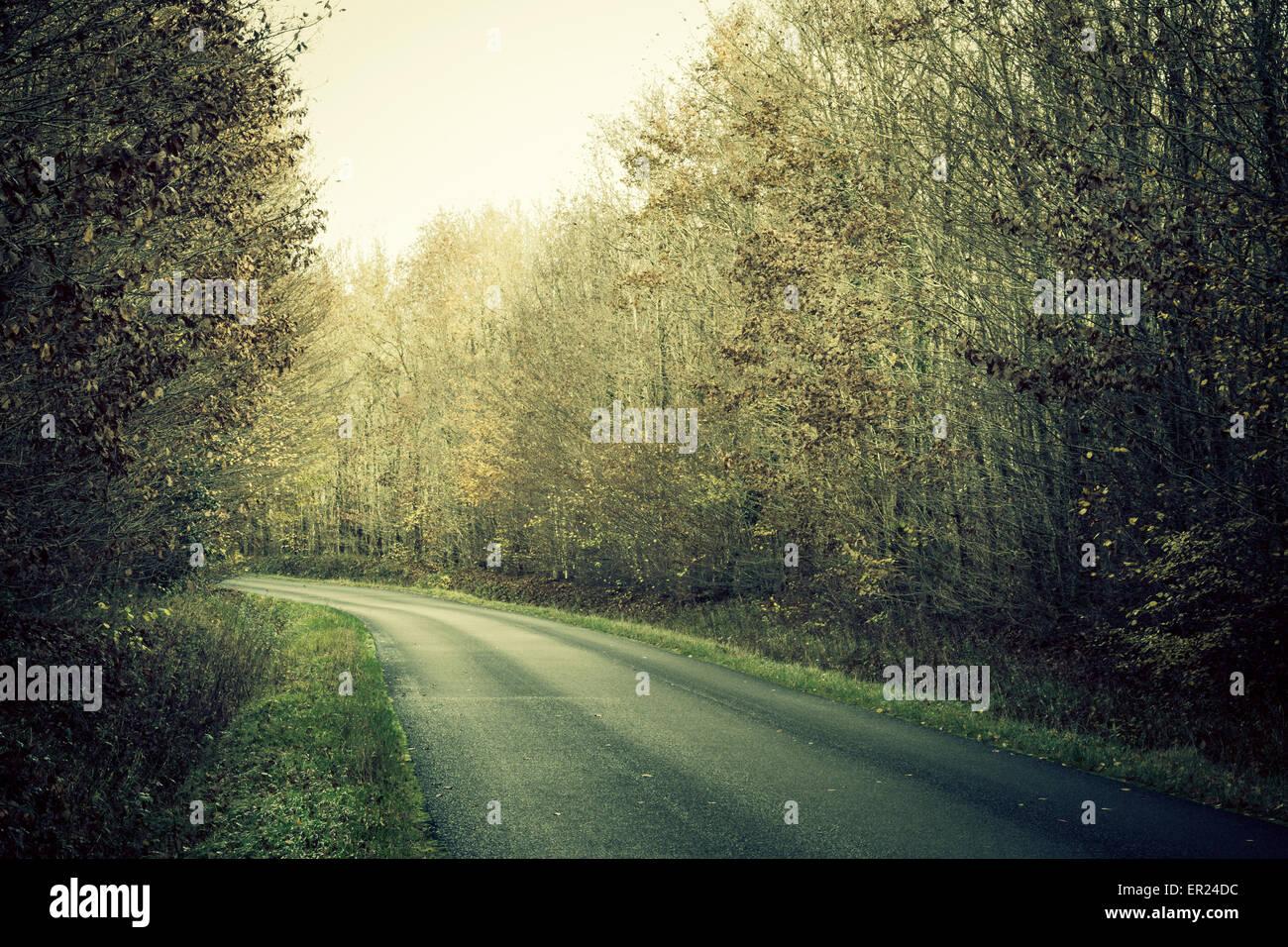Straße Holz Bäume Indre-et-Loire-Frankreich Stockbild