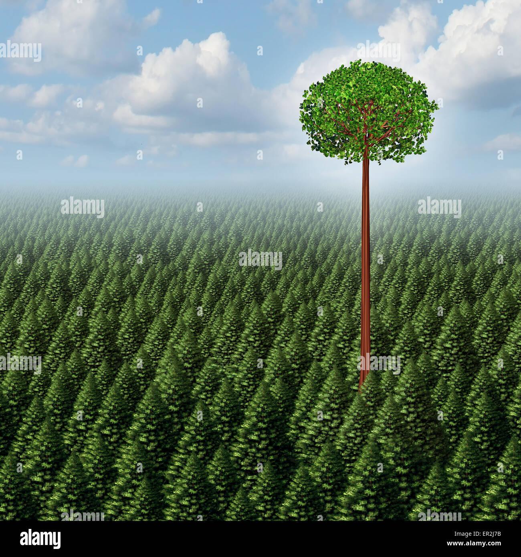Heben Sie sich von der Masse-Konzept als ein Wald von immergrünen Bäumen mit einem erfolgreichen Blatt Stockbild