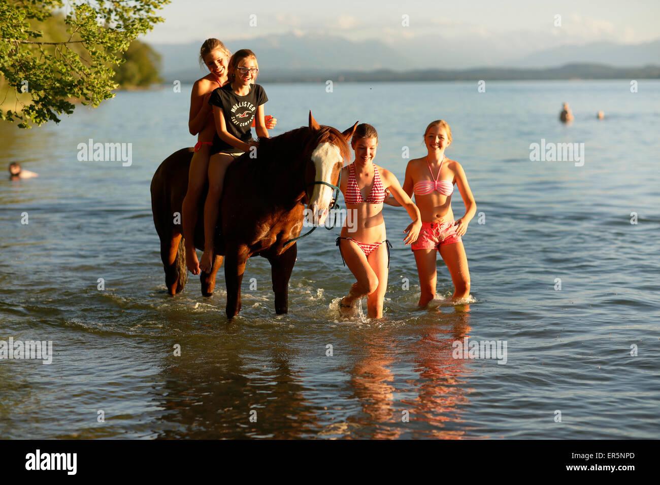 Vier Mädchen mit einem Pferd in See Starnberg, Ammerland, Munsing, Oberbayern, Deutschland Stockbild