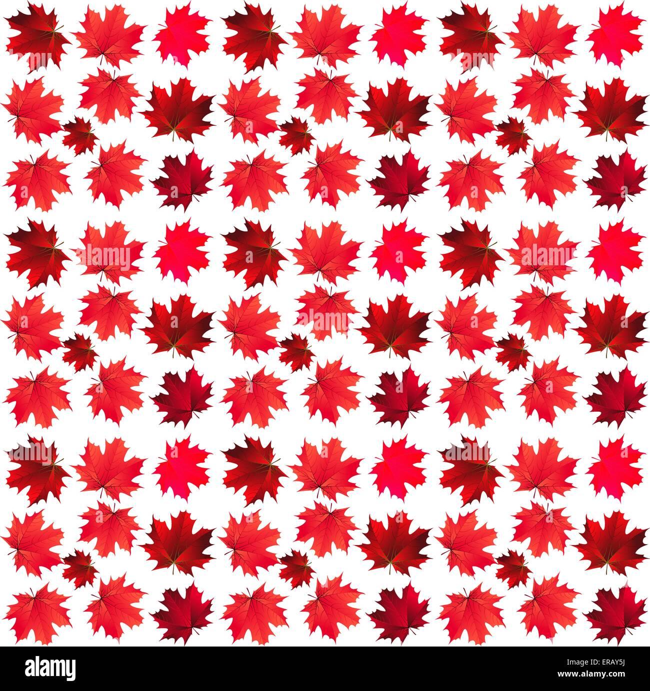 Muster der rot-Ahorn-Blätter Stockbild