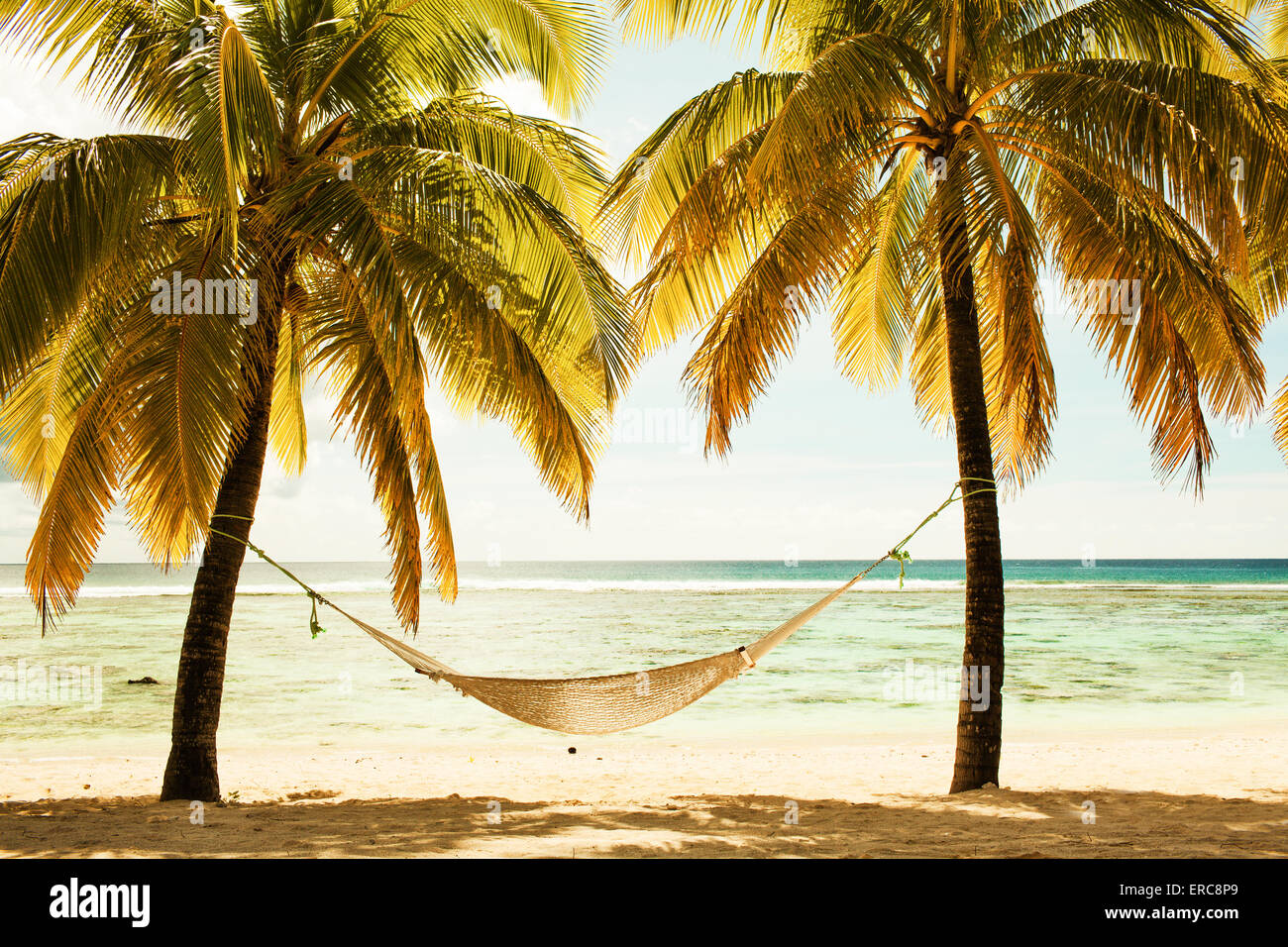 swing on paradise tropical beach stockfotos swing on paradise tropical beach bilder alamy. Black Bedroom Furniture Sets. Home Design Ideas