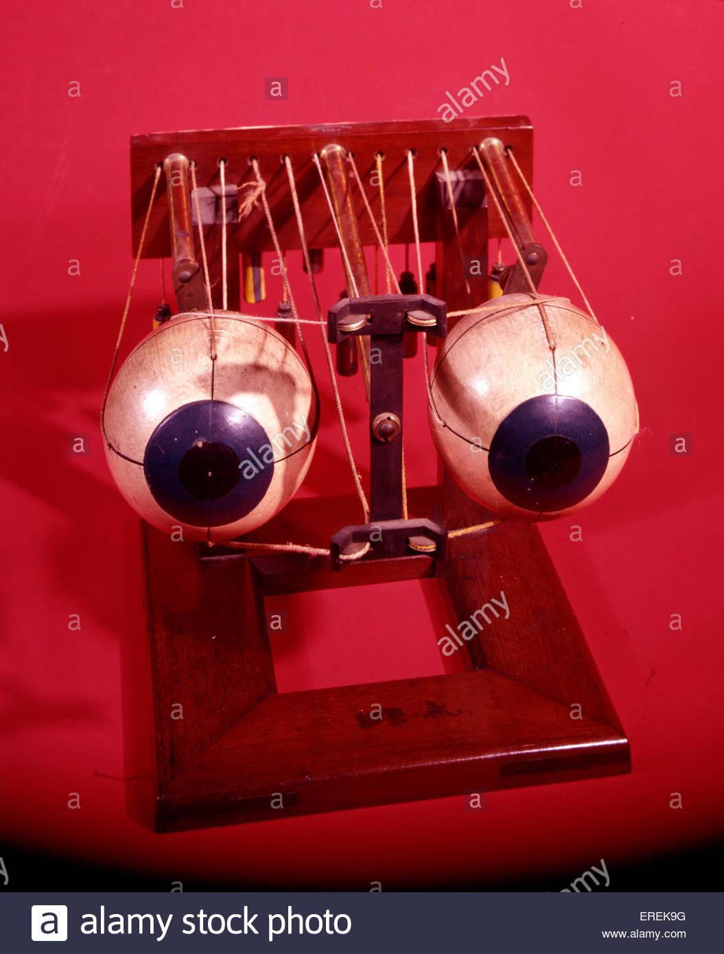 Modell der Augen durch Hermann von Helmholtz, deutscher Arzt und Physiker (1821 ? 1894). Stockbild