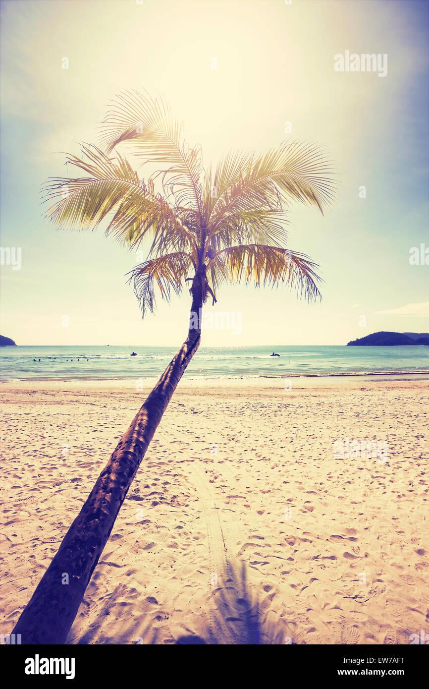 Vintage stilisierte tropischen Strand mit Palme bei Sonnenuntergang. Stockbild