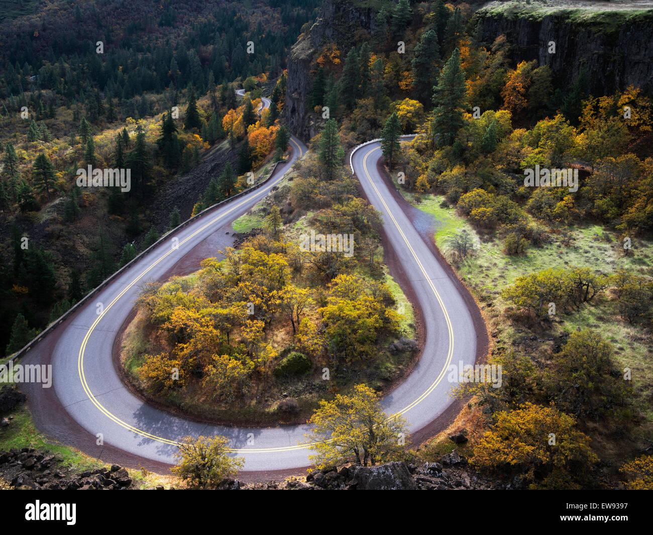 Geschwungene Straße (Columbia River Gorge historische Straße) mit den Farben des Herbstes. Columbia River Stockbild