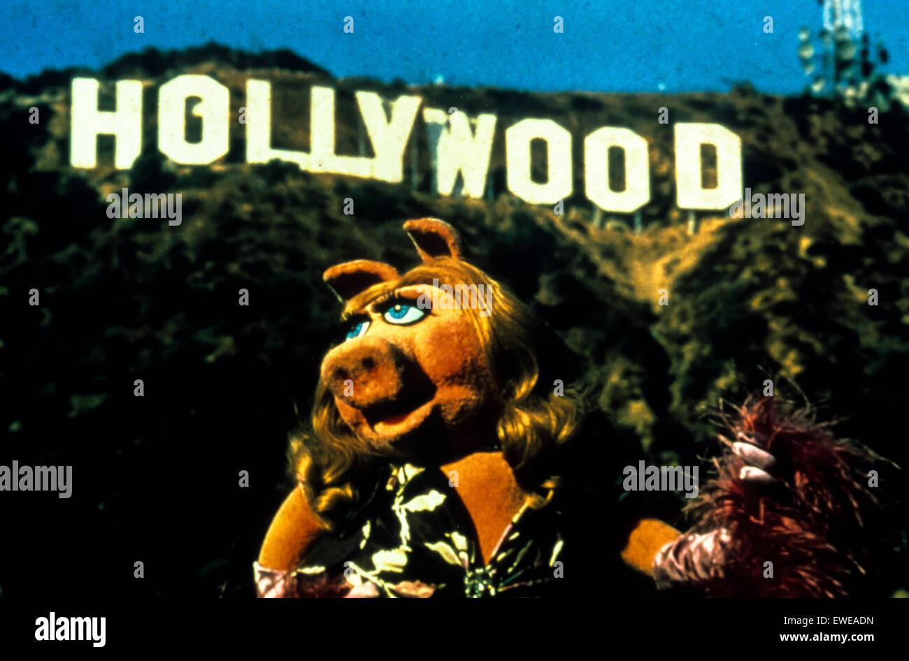 Muppets Film, 2011 Stockbild