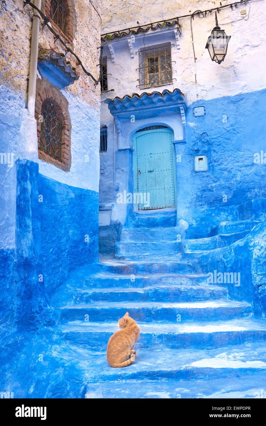 Chefchaouen (Chaouen). Ist bekannt für seine Gebäude in Blautönen. Marokko Stockbild