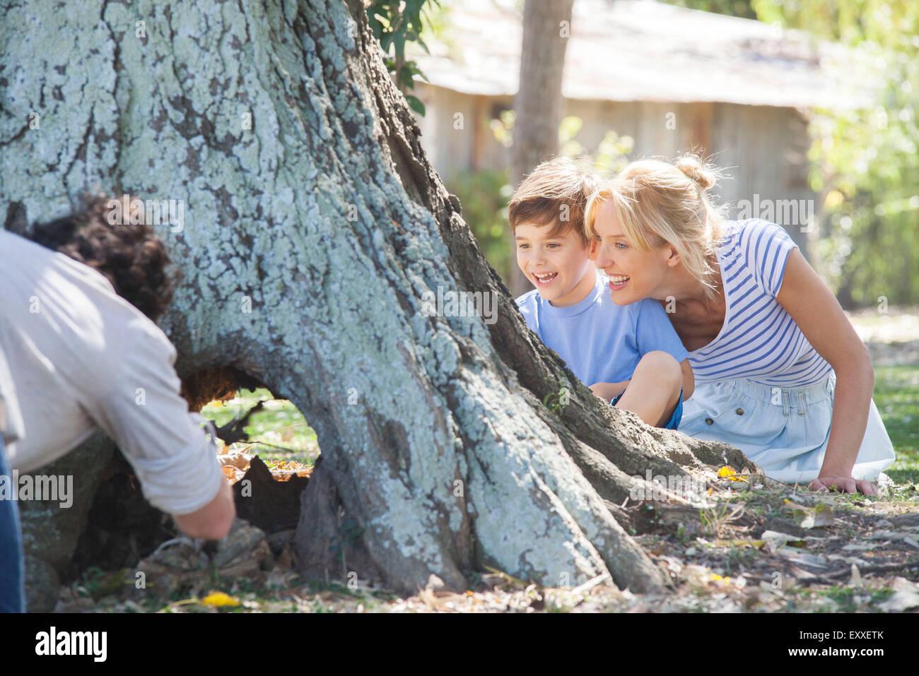 Junge Familie erkunden ausgehöhlten Baumstamm Stockbild
