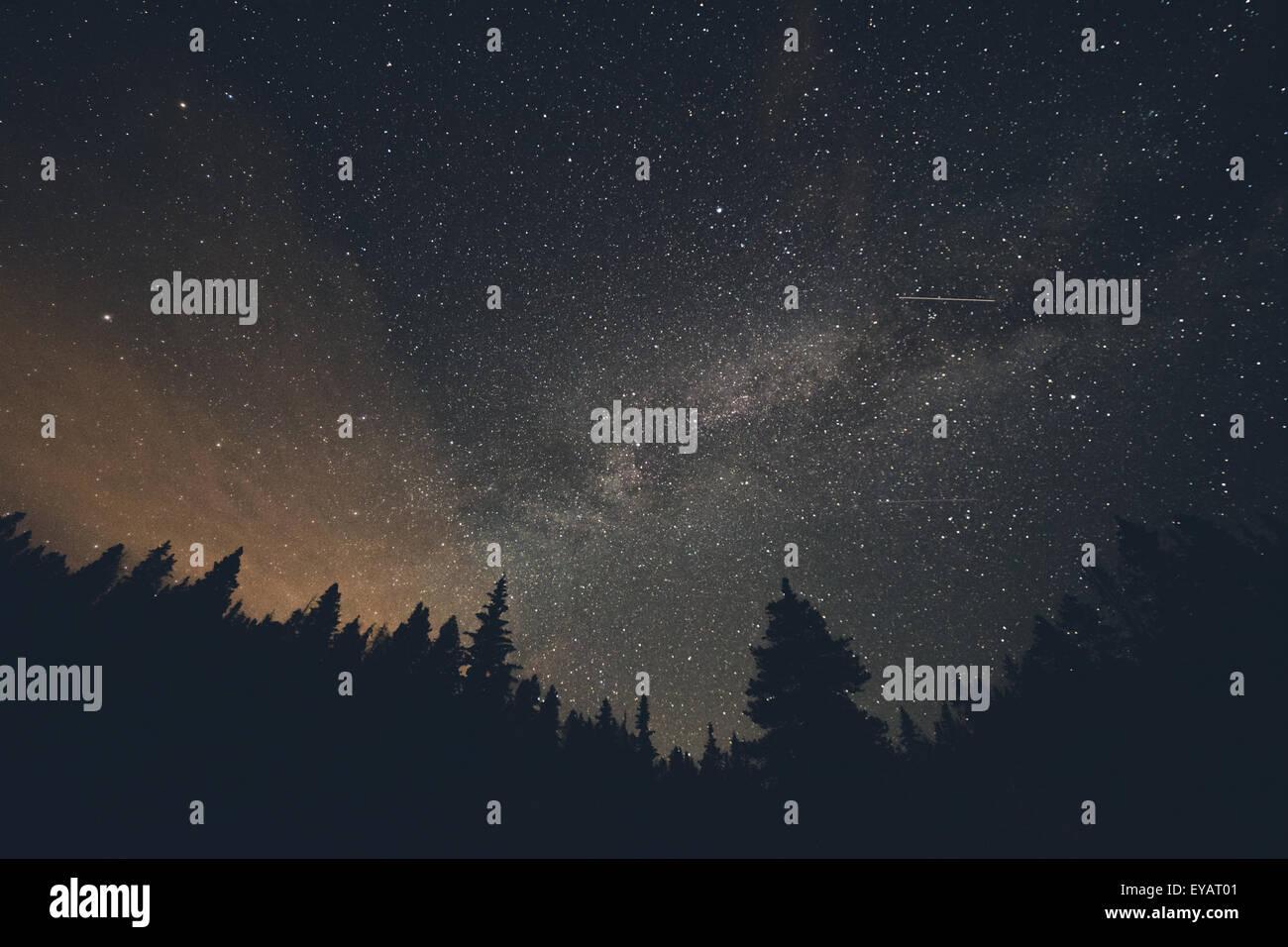 Milchstraße und Sternschnuppen in Breckenridge, Colorado Stockbild