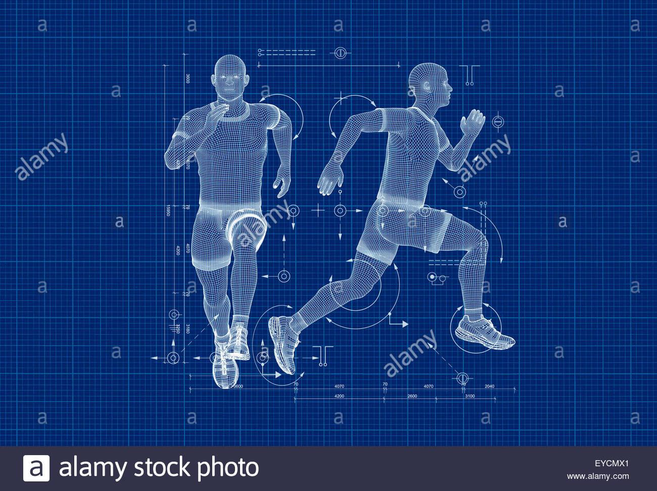 Anatomisches Modell und Diagramm der Mann läuft Stockbild