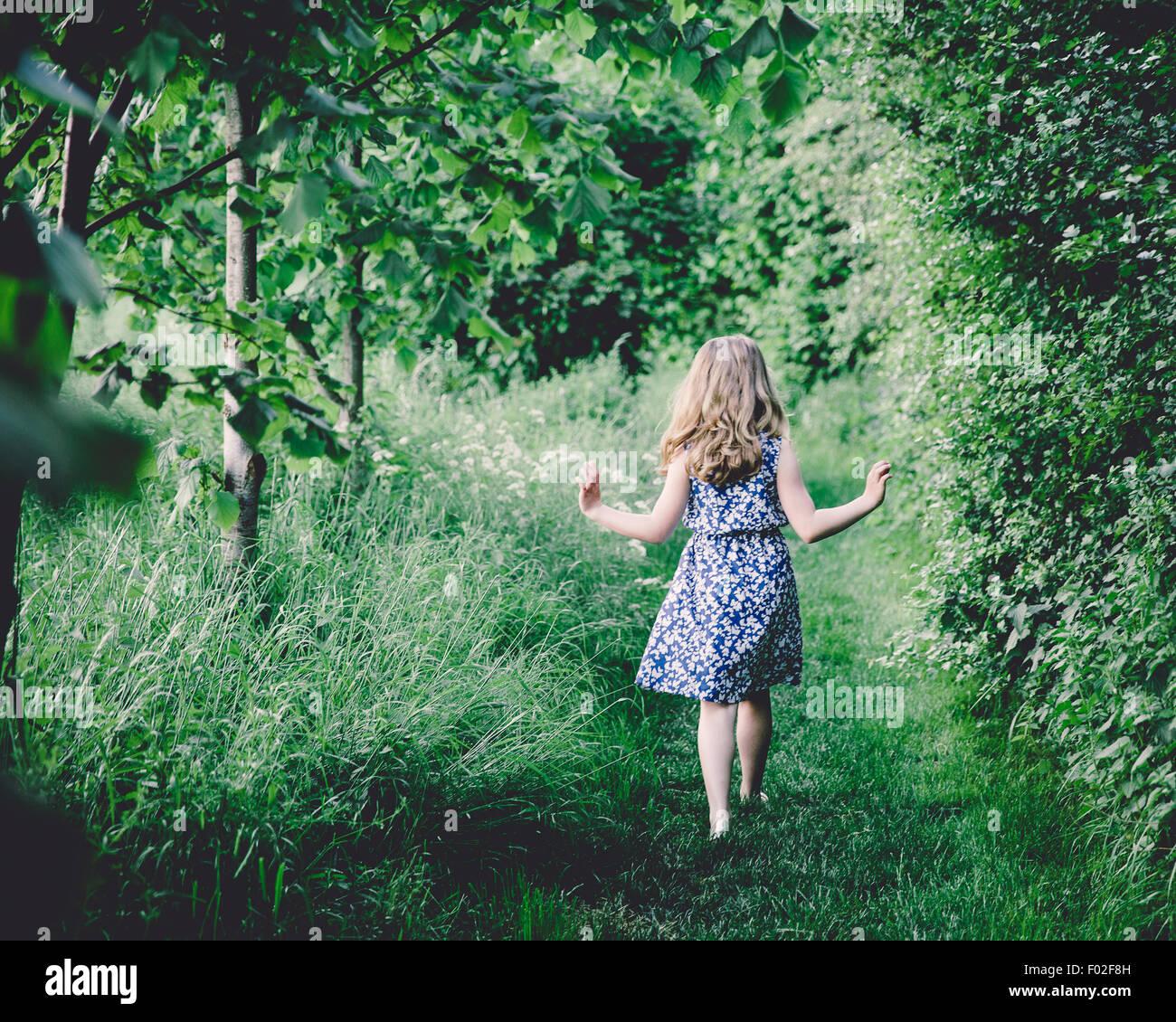 Rückansicht eines Mädchens zu Fuß durch Wald Stockbild