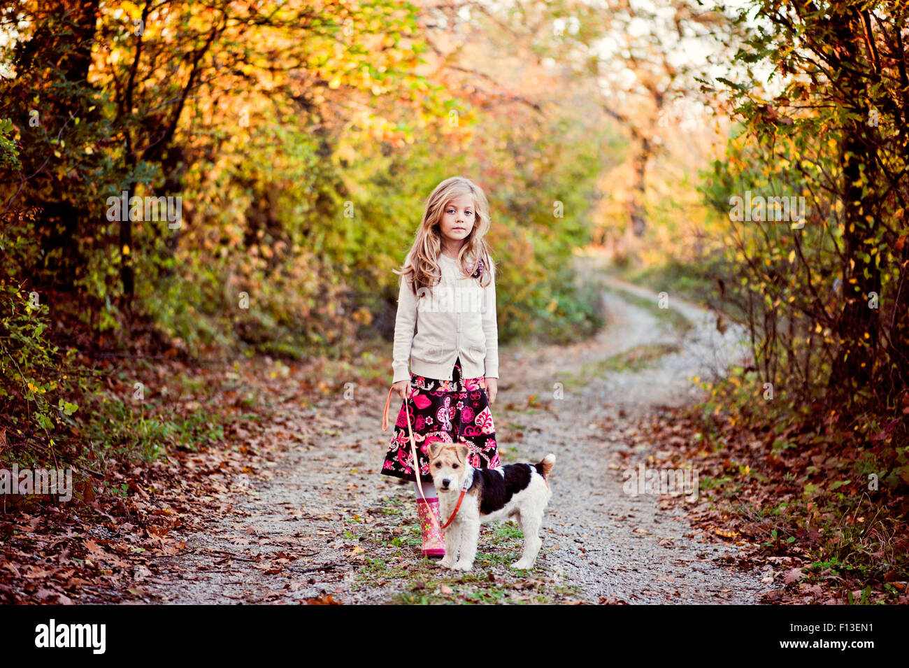 Mädchen zu Fuß ihr Fox Terrier Hund im Wald Stockbild