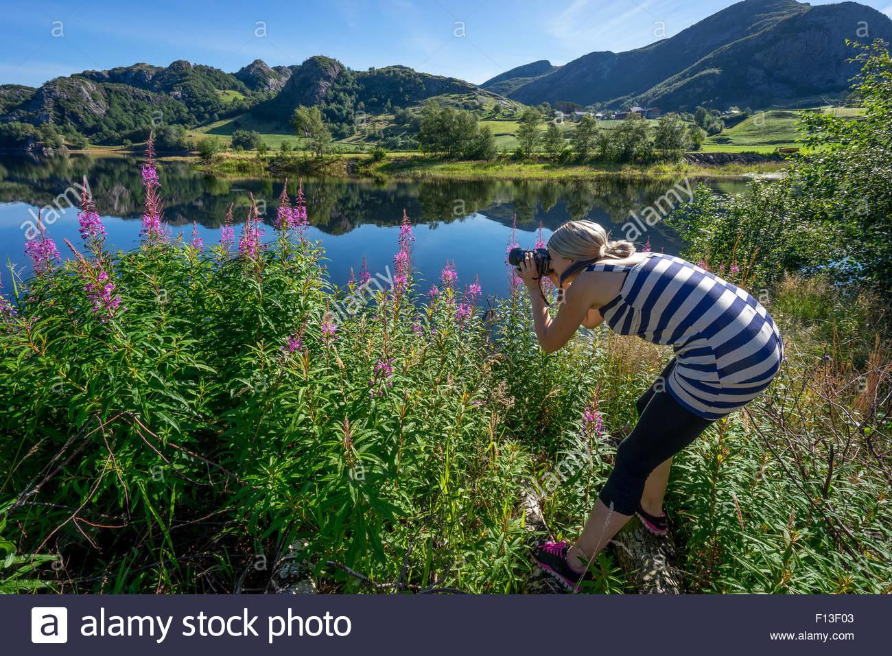 Frau, die ein Foto von Blumen Stockbild