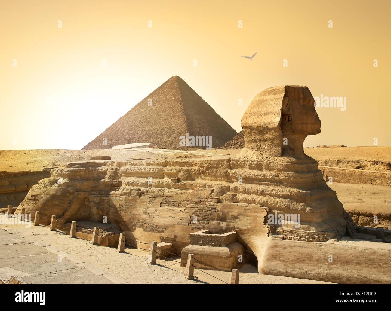 Vogel über Sphinx und Pyramide in der ägyptischen Wüste Stockbild