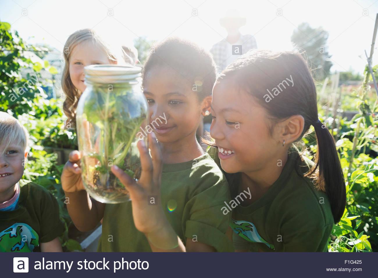 Neugierige Mädchen untersuchen Pflanze jar Sonnengarten Stockbild