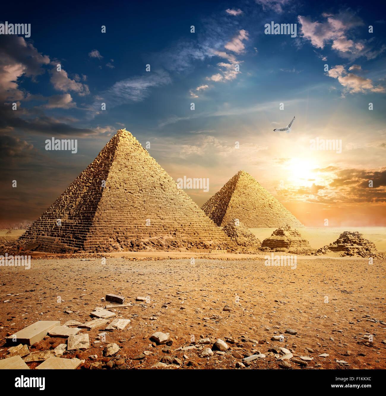 Riesenvogel über Pyramiden in den Sonnenuntergang Stockbild