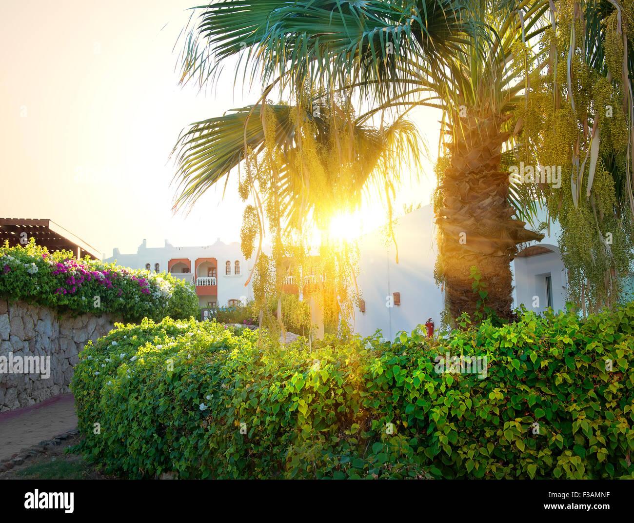 Hellen Sonnenaufgang über Resorthotel in Ägypten Stockbild