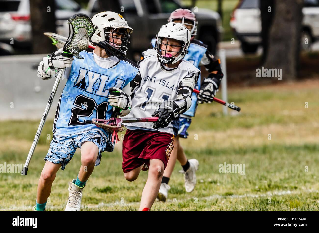 Junior lacrosse Spieler wetteifern um den Ball Stockbild