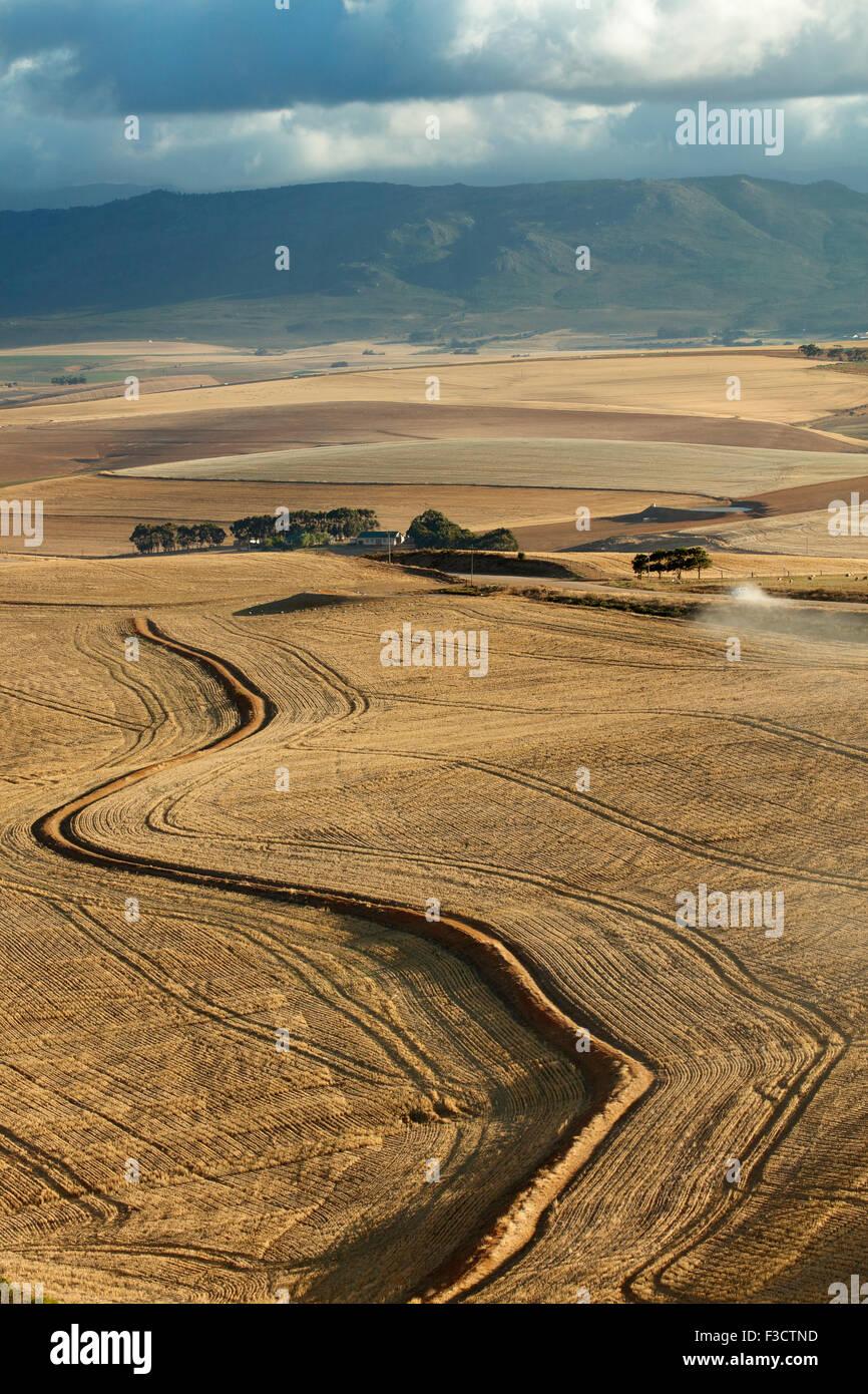 hügelige Ackerland in der Overberg Region in der Nähe von Villiersdorp, Western Cape, Südafrika Stockbild