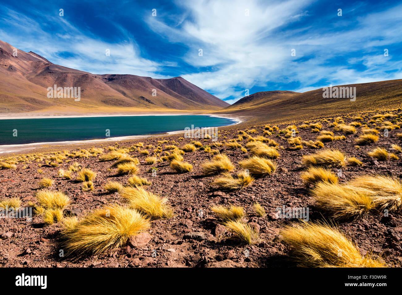 Der Meniquez-Lagune in der Atacama-Wüste, Chile, 2013 Stockbild
