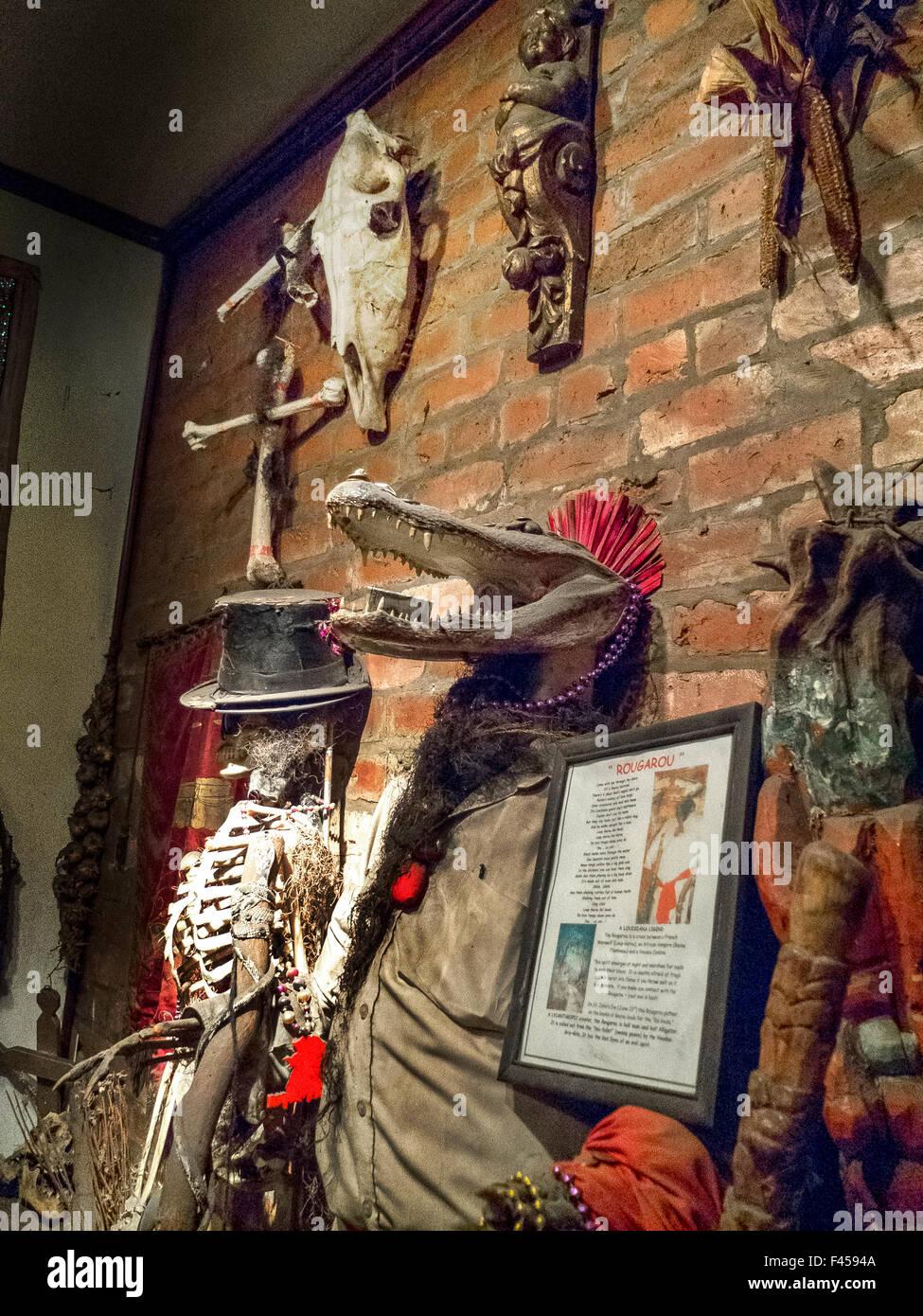 Ein Alligator geleitet Neuerstellung der Rougarou ist Exhinited im Voodoo Museum in New Orleans. Das Rougarou ist Stockbild