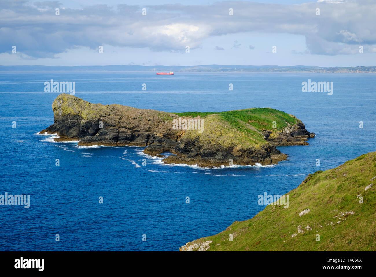 Mullion Insel Bird Sanctuary, Pfosten, Cornwall, England, UK - von der South West Coast path Stockbild