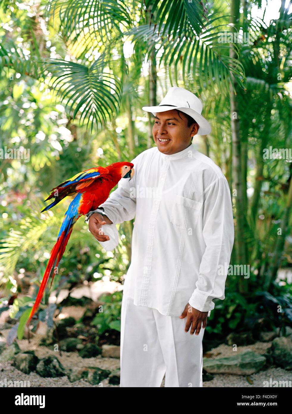 Ein mexikanischer Mitarbeiter hält eine Ara Papagei vor der Fütterungszeit im Maroma Spa and Resort. Riviera Stockbild