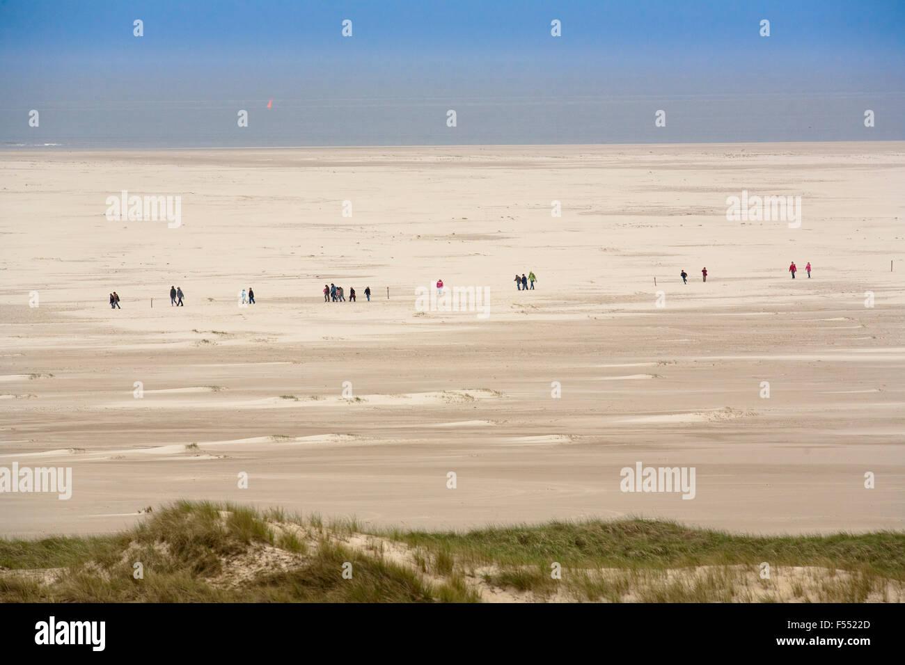 Deu, Deutschland, Schleswig-Holstein, Nordsee, Insel Amrum, Spaziergänger am Strand kniepsand in der Nähe Stockbild